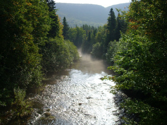 Eagle Eye Outfitters: Salmon Fishing, Margaree River